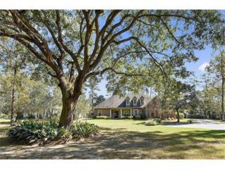 1002 Acadian Drive, Madisonville, LA 70447 (MLS #2080497) :: Turner Real Estate Group