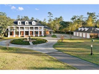 34177 Elks Road, Slidell, LA 70460 (MLS #2084601) :: Turner Real Estate Group