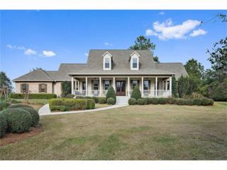 19123 La Tung Road, Covington, LA 70435 (MLS #2086163) :: Turner Real Estate Group