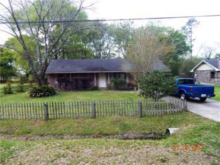 137 Oak Street, Independence, LA 70443 (MLS #2095237) :: Turner Real Estate Group