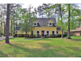 504 Dorado Drive, Mandeville, LA 70471 (MLS #2095369) :: Turner Real Estate Group