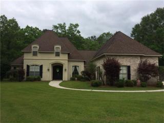 300 Wilderness Court, Madisonville, LA 70447 (MLS #2101291) :: Turner Real Estate Group