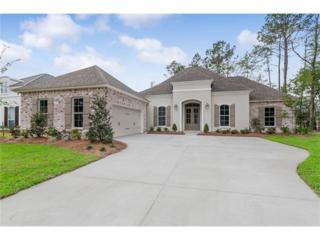 597 Blue Heron Lane, Madisonville, LA 70447 (MLS #2101918) :: Turner Real Estate Group