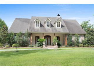 281 Ponchitolawa Drive, Covington, LA 70433 (MLS #2058769) :: Turner Real Estate Group