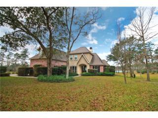 981 Great Southern Drive, Abita Springs, LA 70420 (MLS #2089399) :: Turner Real Estate Group
