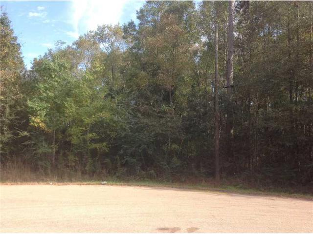 Highland Trace Lot 17 Trace, Independence, LA 70443 (MLS #1002106) :: Watermark Realty LLC
