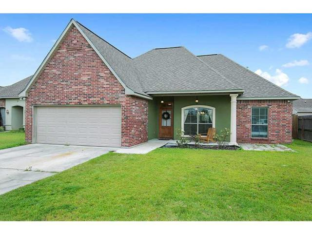33859 Nicole Ave Avenue, Denham Springs, LA 70706 (MLS #1003081) :: Turner Real Estate Group