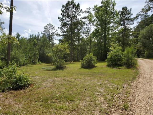 Big Buck Road, Poplarville, MS 39470 (MLS #2210977) :: Top Agent Realty