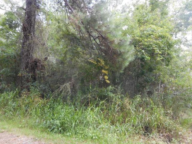 0000 Donnis Drive, Slidell, LA 70460 (MLS #2212865) :: Robin Realty