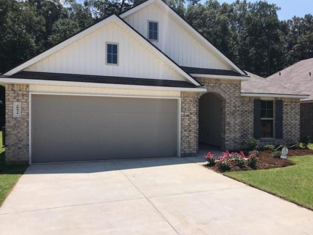 28434 Evangeline Lane, Albany, LA 70711 (MLS #2213814) :: Top Agent Realty
