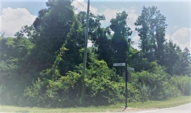 0 Rabbit Hill Lane, Carriere, MS 39426 (MLS #2217935) :: Top Agent Realty