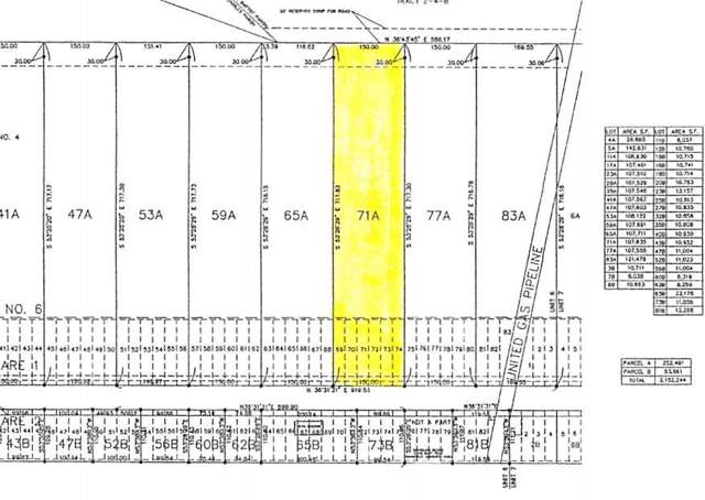 899 Evangeline Road, Montz, LA 70068 (MLS #2227168) :: Turner Real Estate Group