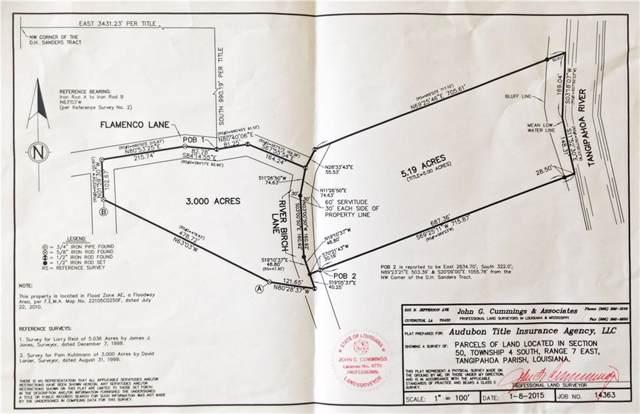 River Birch Lane, Amite, LA 70422 (MLS #2227951) :: Watermark Realty LLC