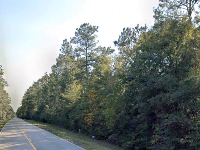 0TBD Hwy 445 Highway, Loranger, LA 70446 (MLS #2234329) :: Watermark Realty LLC