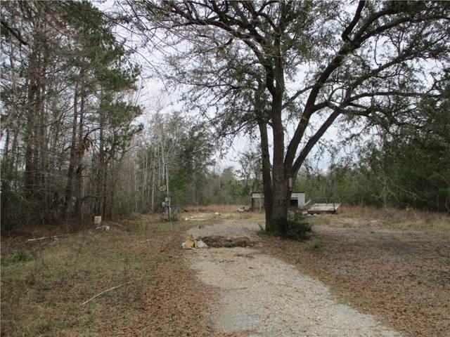 26041 Highway 42 Highway, Springfield, LA 70462 (MLS #2237852) :: Turner Real Estate Group