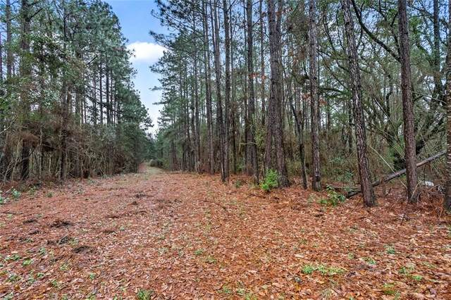 81443 F Jenkins Road, Bush, LA 70431 (MLS #2242638) :: Top Agent Realty