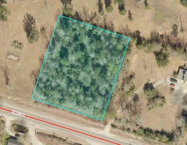 Hwy 190 Highway, Lacombe, LA 70445 (MLS #2244097) :: Reese & Co. Real Estate