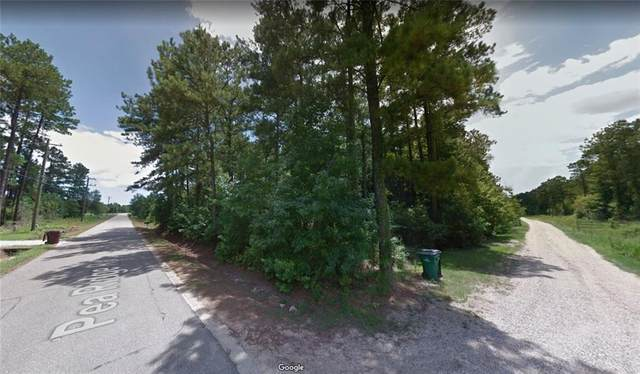 32061 Pea Ridge Road, Albany, LA 70711 (MLS #2267764) :: Crescent City Living LLC