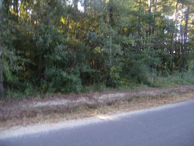Traino Road, Ponchatoula, LA 70454 (MLS #2269424) :: Turner Real Estate Group