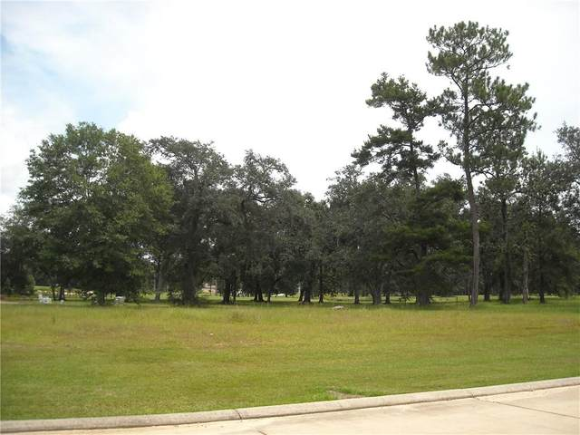 24100 Snowy Egret Cove, Springfield, LA 70462 (MLS #2274008) :: Reese & Co. Real Estate