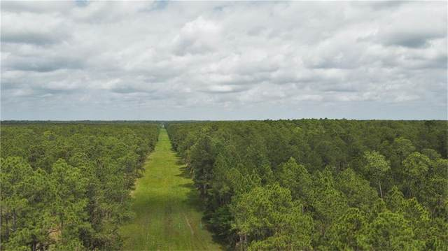 243 Acres Chene Drive, Lacombe, LA 70445 (MLS #2277540) :: Turner Real Estate Group