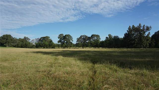 E Bell Road, Amite, LA 70422 (MLS #2282057) :: Nola Northshore Real Estate