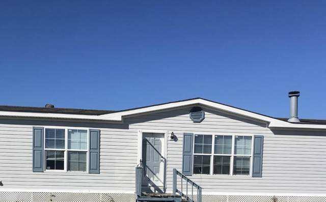 118 Ostrica Lane, Buras, LA 70041 (MLS #2282254) :: Turner Real Estate Group