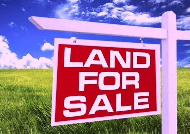 50253 Huckleberry Lane, Folsom, LA 70437 (MLS #2290615) :: Turner Real Estate Group