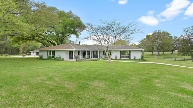 82169 N Morgan Road, Folsom, LA 70437 (MLS #2292962) :: Turner Real Estate Group