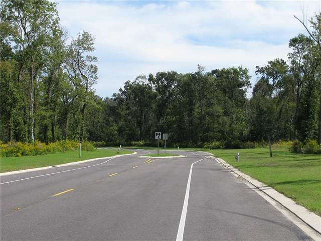 817 Dandelion Drive, Waggaman, LA 70094 (MLS #2294382) :: Turner Real Estate Group