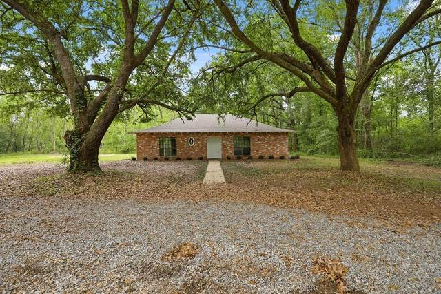 50522 S Lester Lane, Loranger, LA 70446 (MLS #2295432) :: Reese & Co. Real Estate