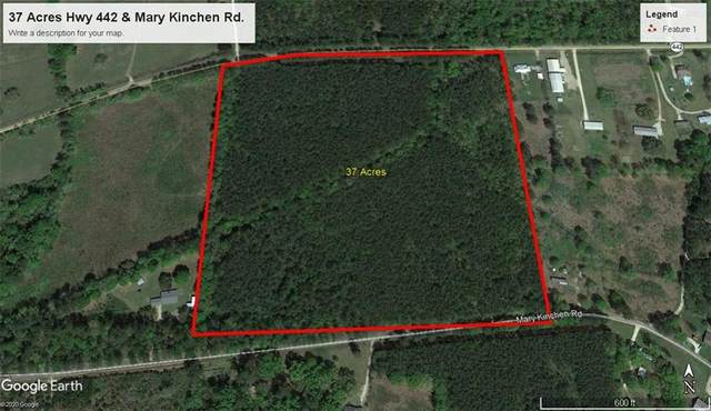 Mary Kinchen Rd. Road, Albany, LA 70711 (MLS #2305493) :: Parkway Realty