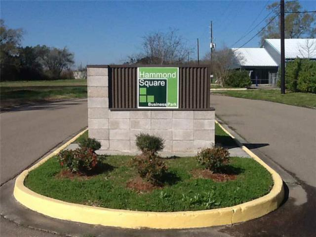 1206 Mckaskle Drive, Hammond, LA 70403 (MLS #942580) :: Parkway Realty