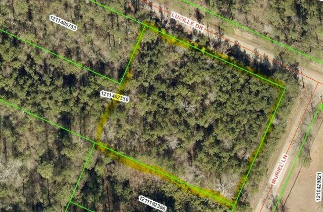 Lucille Drive, Lacombe, LA 70445 (MLS #2168743) :: The Sibley Group