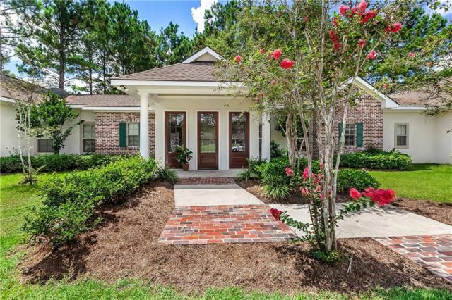 30700 Blue Wing Crescent, Springfield, LA 70462 (MLS #2193511) :: Crescent City Living LLC