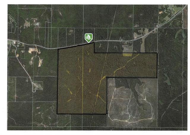 Baughman Road, Poplarville, MS 39470 (MLS #2211281) :: Top Agent Realty