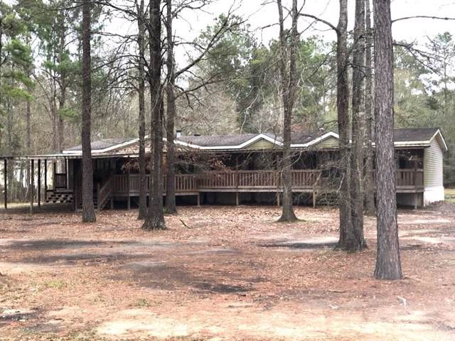 32108 Pea Ridge Road, Albany, LA 70711 (MLS #2237746) :: Turner Real Estate Group