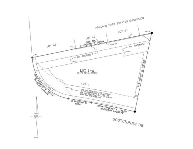 417 Scotchpine Drive, Mandeville, LA 70471 (MLS #2205207) :: Top Agent Realty