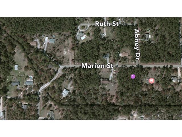 Marion Street, Mandeville, LA 70471 (MLS #2056757) :: Turner Real Estate Group