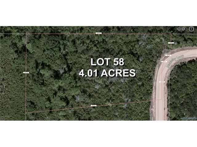 58 Makinley Loop, Amite, LA 70422 (MLS #2079509) :: Turner Real Estate Group