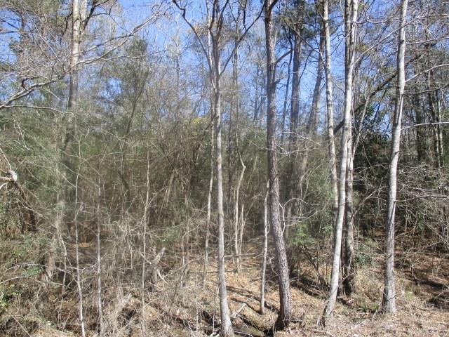 Lot 5 Hwy 1072 Highway, Franklinton, LA 70438 (MLS #2089846) :: Top Agent Realty