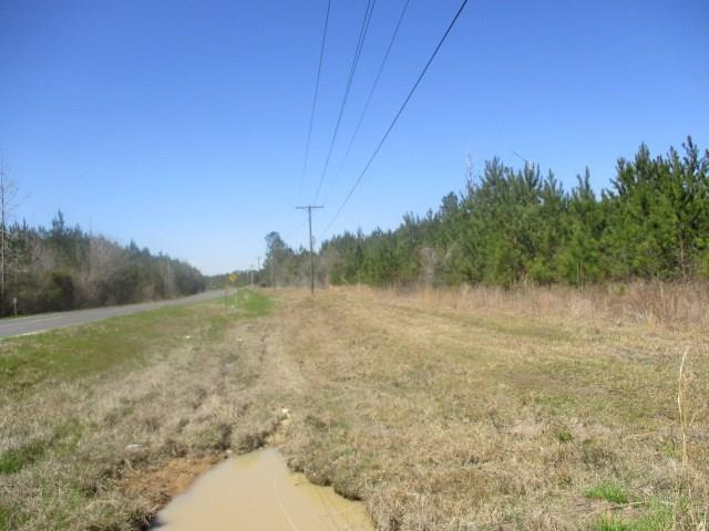 Lot 2 Hwy 1072 Highway, Franklinton, LA 70438 (MLS #2089851) :: Turner Real Estate Group