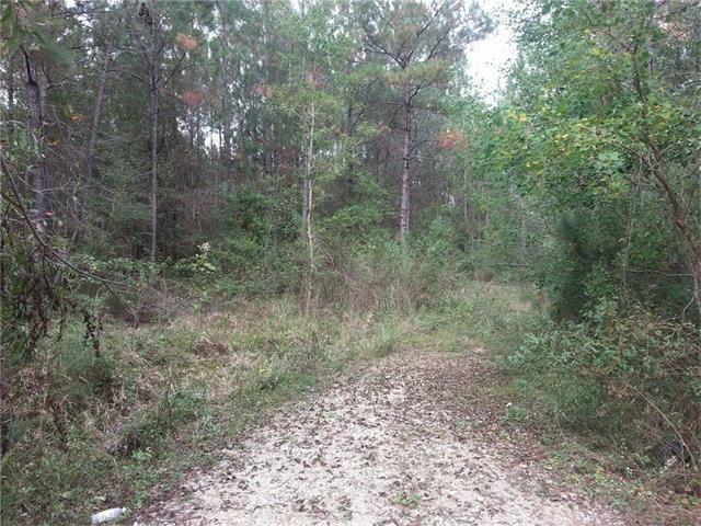 Lot 15 Polk Street, Abita Springs, LA 70420 (MLS #2092818) :: Crescent City Living LLC