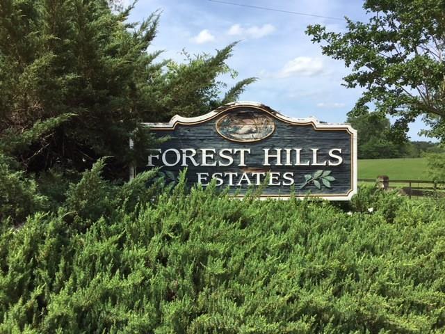 Lot 14 Forest Hills Drive, Franklinton, LA 70438 (MLS #2094509) :: Turner Real Estate Group