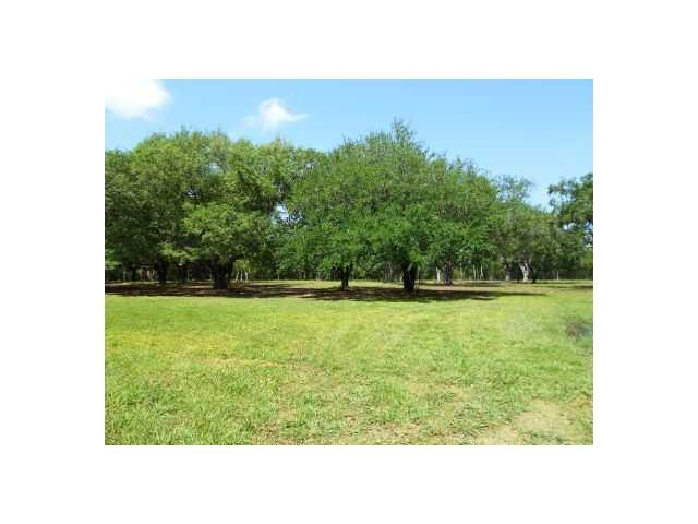 Ollie Drive, Belle Chasse, LA 70037 (MLS #2097561) :: Turner Real Estate Group