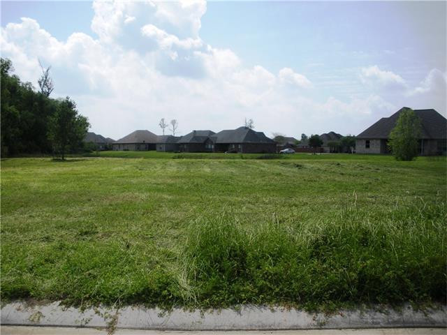 317 S South Pass Drive, La Place, LA 70068 (MLS #2097954) :: Robin Realty