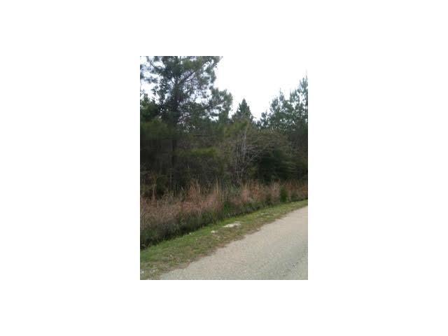 Spruce Drive, Lacombe, LA 70445 (MLS #2104327) :: Turner Real Estate Group