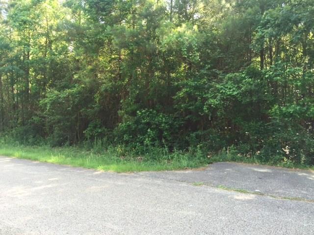 Woodland Drive, Bush, LA 70431 (MLS #2110355) :: Turner Real Estate Group