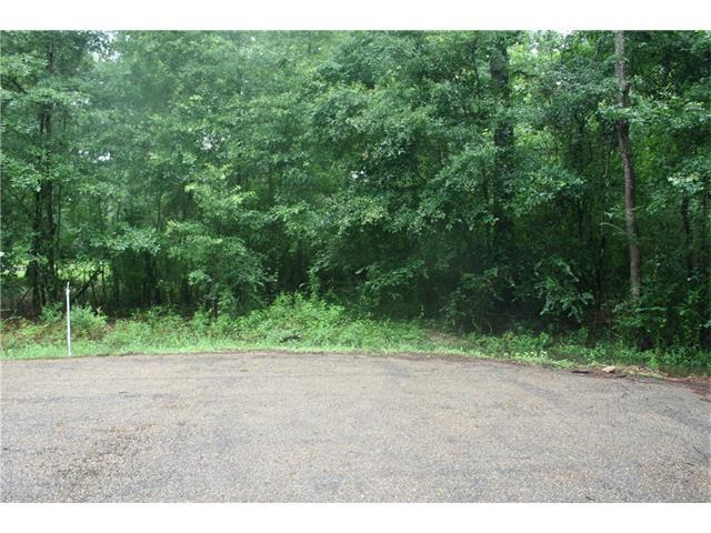47120 Scott Drive, Hammond, LA 70401 (MLS #2112496) :: Turner Real Estate Group