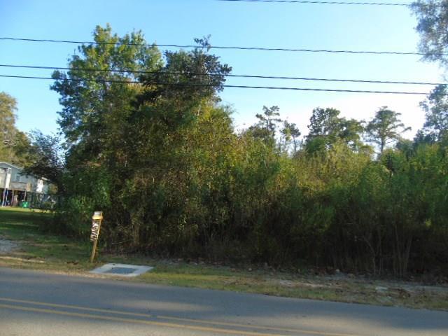 Rose Thorne Road, Lafitte, LA 70067 (MLS #2124806) :: Turner Real Estate Group